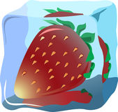 Strawberry. Fresh strawberry frozen in ice, illustrations vector Royalty Free Stock Photo