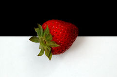 Strawberry. On Black and White Royalty Free Stock Images