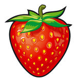 Strawberry. Illustration for your projects Royalty Free Stock Photo