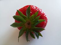 Strawberry4 Obrazy Royalty Free