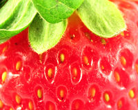 Strawberry. Extreme close up royalty free stock photography
