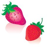 Strawberry. Illustration of strawberries with leafs stock illustration