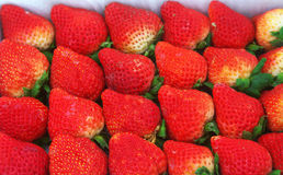 Strawberry. Some delicious strawberrys in market Royalty Free Stock Photo
