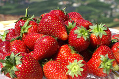 Strawberry. A plate of strawberries outdoor Stock Photography