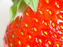 Strawberry. In closeup royalty free stock image