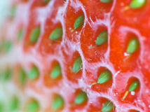 Strawberry. In closeup stock photo