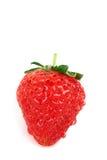 Strawberry Royalty Free Stock Photos