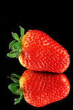 Strawberry. With reflection on a black background, a close up Royalty Free Stock Photography