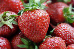 Strawberry Stock Images