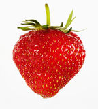 Strawberry. Fresh Red Strawberry from Bavaria Stock Images