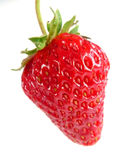 Strawberry. One red strawberry isolated on white Stock Images