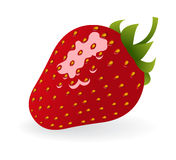 Strawberry. One strawberry on white background. Vector illustration Stock Photo