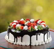 Strawberry. Chocolate and strawberry cake for birthday party Royalty Free Stock Image