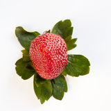 Strawberry from Above with Green Leaves Royalty Free Stock Image
