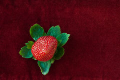 Strawberry from Above with Green Leaves on Red Stock Photos