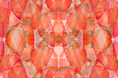 Strawberry abstract background. Pattern of  slices strawberry. Strawberry background. Royalty Free Stock Images