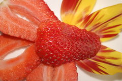 Strawberry abstract dessert Stock Images