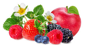 Strawberry,apple,raspberry,blackberry, bilberry, blueberries. Isolated on white background Stock Photos