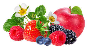 Strawberry,apple,raspberry,blackberry, bilberry, blueberries. Isolated on white background Stock Images