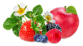 Strawberry,apple,raspberry,blackberry, bilberry, blueberries Stock Images