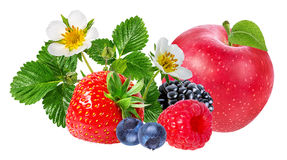 Strawberry,apple,raspberry,blackberry, bilberry, blueberries. Isolated on white background Royalty Free Stock Photo