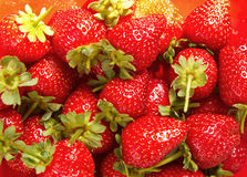 Strawberry as background. Strawberry on the red background Royalty Free Stock Photo
