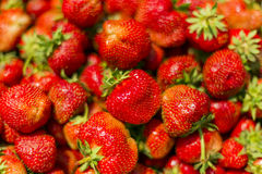 Strawberry as background Royalty Free Stock Photo