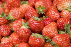 Strawberry background Royalty Free Stock Photo