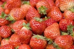 Strawberry background. Background of lots of dark red ripe fresh cherries Royalty Free Stock Photo