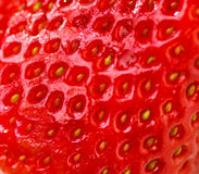 Strawberry background Stock Images