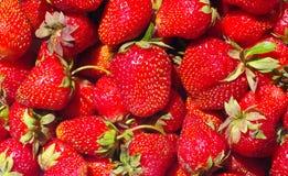 Strawberry.background Royalty-vrije Stock Foto's