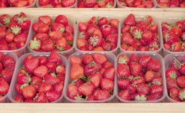 Strawberry background. In the market of France royalty free stock images