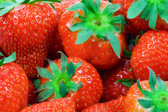Free Strawberry Background Royalty Free Stock Photo - 4132325
