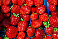 Strawberry background in the box Royalty Free Stock Photos