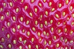 Strawberry background Stock Photo