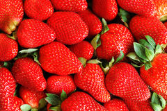 Strawberry background. Fresh strawberry background for design Stock Photography
