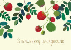 Strawberry background with leaves Stock Image