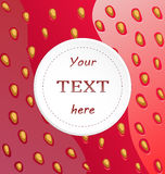 Strawberry background. White round card for text on strawberry background Royalty Free Stock Photos