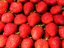 Strawberry Backgrounds Royalty Free Stock Photo