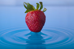 Strawberry Water Splash Stock Images