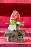 Strawberry Balancing on a Pile of Dark Chocolate Royalty Free Stock Photography