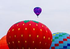 STRAWBERRY BALLOON royalty free stock photography