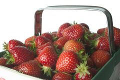 Strawberry Basket. Basket of freshly picked strawberries Royalty Free Stock Photography