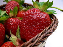 Strawberry basket. On white background Stock Image