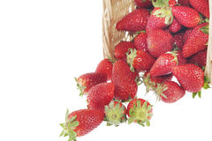Strawberry basket Stock Photography
