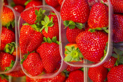 Strawberry basket Stock Photos