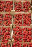 Strawberry baskets Royalty Free Stock Photos