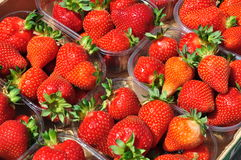 Strawberry baskets. Ripe strawberries in sunshine Stock Photo
