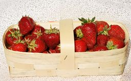 Strawberry berries in a bast basket Stock Image