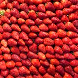 Strawberry berries texture close-up for background Royalty Free Stock Photography